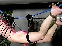 Spurting blowjobs and glory hole blowjob miami - Boy Napped!